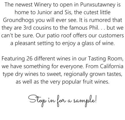 The newest Winery to open in Punxsutawney is home to Junior and Sis, the cutest little Groundhogs you will ever see. It is rumored that they are 3rd cousins to the famous Phil. . . but we can't be sure. Our patio roof offers our customers a pleasant setting to enjoy a glass of wine.  Featuring 26 different wines in our Tasting Room, we have something for everyone. From California type dry wines to sweet, regionally grown tastes, as well as the very popular fruit wines. Stop in for a sample!